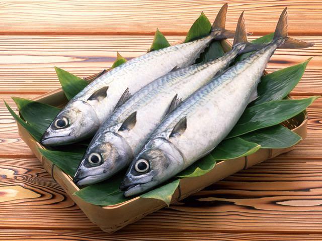 Blue-backed fish httpsimgcpcdncomcmsarticles548m557897e77