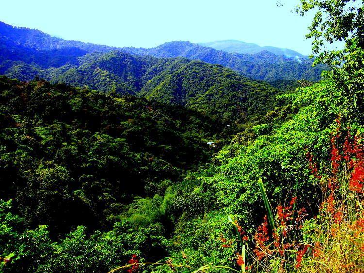 Blue Mountains (Jamaica) httpsyouthandeldersjafileswordpresscom2013
