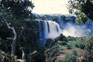 Blue Nile Falls httpsuploadwikimediaorgwikipediacommonsthu