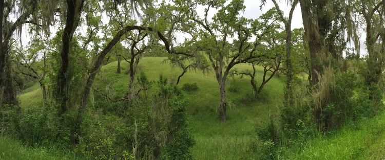 Blue Oak Ranch Reserve Blue Oak Ranch Reserve