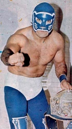 Blue Panther Blue Panther Online World of Wrestling