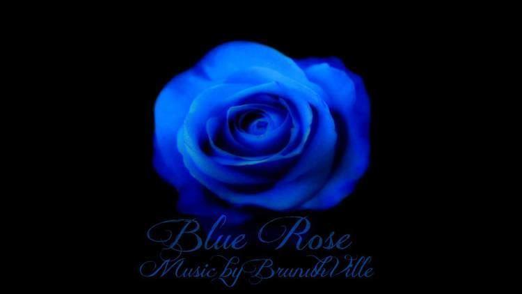 Blue rose Emotional Music Blue Rose YouTube
