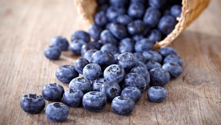 Blueberry Blueberry Nutrition US Highbush Blueberry Council
