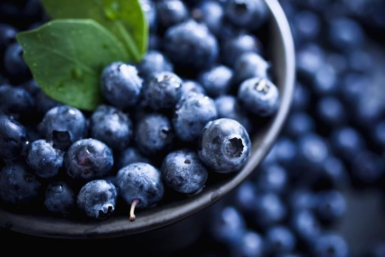 Blueberry Blueberries Health Benefits Facts Research Medical News Today