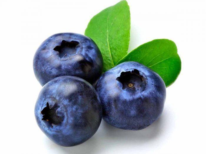 Blueberry httpswwworganicfactsnetwpcontentuploadsBl