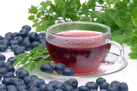Blueberry Tea Buy Blueberry tea Benefits Side Effects How to Make Herbal Teas