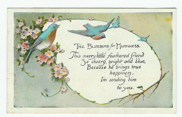 Bluebird of happiness 1000 images about Bluebird of happiness on Pinterest Cottage chic