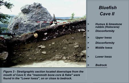 Bluefish Caves Significance of the Bluefish Caves in Beringian Prehistory Essays