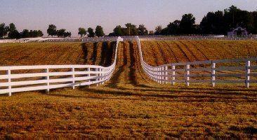 Bluegrass region Bluegrass Region Kentucky Geological Survey site