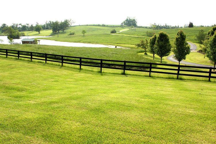 Bluegrass region Kentucky Horse Farm for sale in the Lexington Bluegrass area