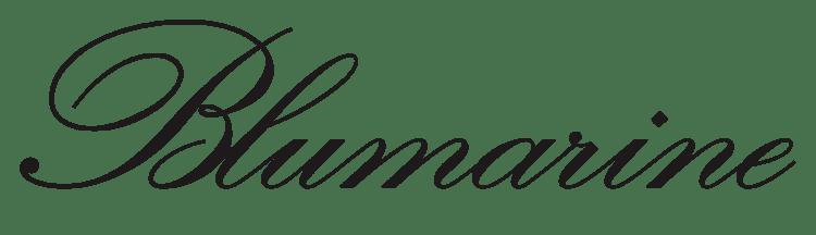 Blufin logonoidcomimagesblumarinelogopng