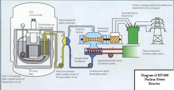 BN-800 reactor Metal Cooled Reactor