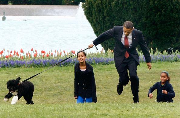 Bo (dog) Malia Obama and Bo Obama Photos Photos The White House Debuts The