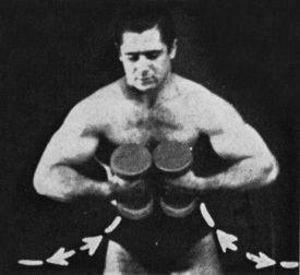 Bob Hoffman (sports promoter) The Book Of Big Arms Bob Hoffman Biceps Workout