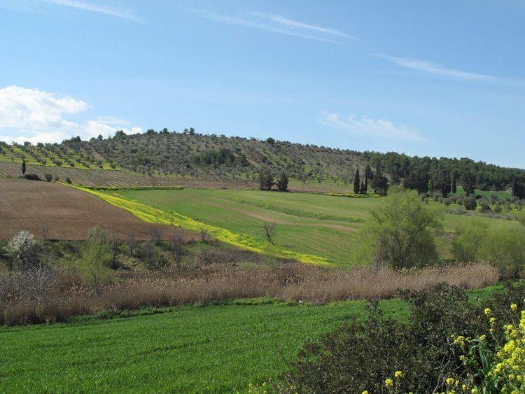Boeotia Beautiful Landscapes of Boeotia