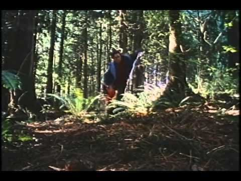 Born to Be Wild (1995 film) Born To Be Wild Trailer 1995 YouTube