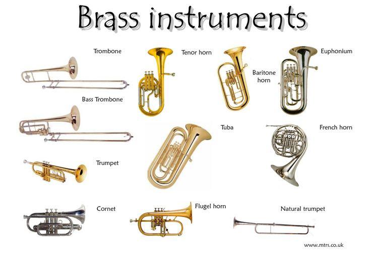 Brass instrument msvmusic Homemade Instrument