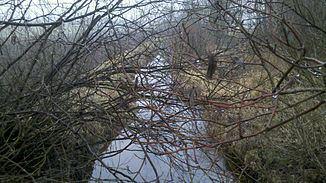 Braunau (river) httpsuploadwikimediaorgwikipediacommonsthu