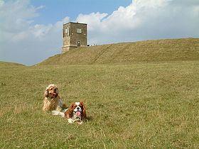Bredon Hill httpsuploadwikimediaorgwikipediacommonsthu