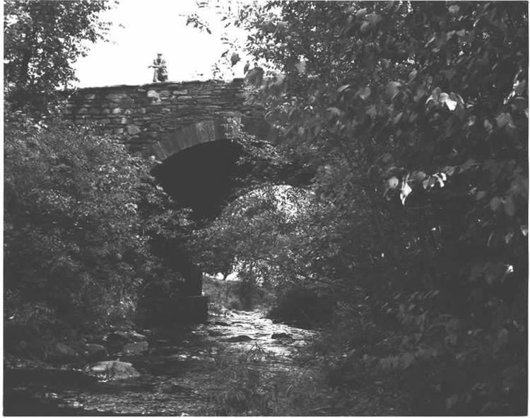 Bridge in Dreher Township