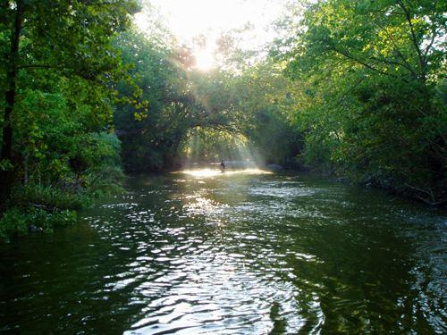 Brushy Creek, Williamson County, Texas texasflycastercomwpcontentuploads20130310jpg