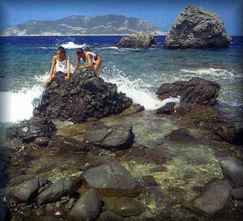 Brusnik (island) httpsstatic1squarespacecomstatic52405cfae4b