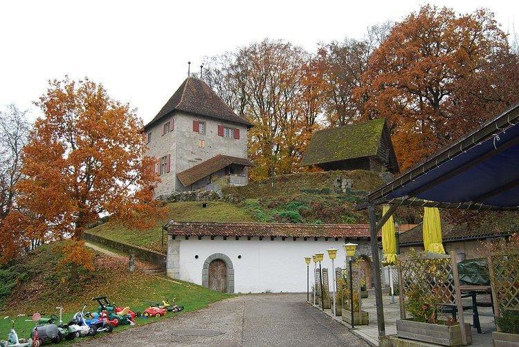 Buchegg Castle