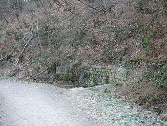 Buchenhofener Siepen httpsuploadwikimediaorgwikipediacommonsthu