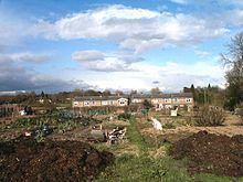 Buckland Common httpsuploadwikimediaorgwikipediacommonsthu