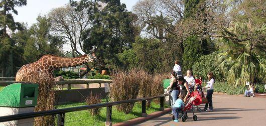 Buenos Aires Zoo Buenos Aires Zoo Buenos Aires Tours