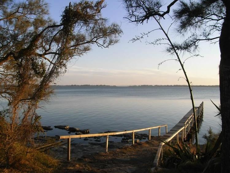 Buff Point, New South Wales httpsimagesrealestateviewcomaupics116127