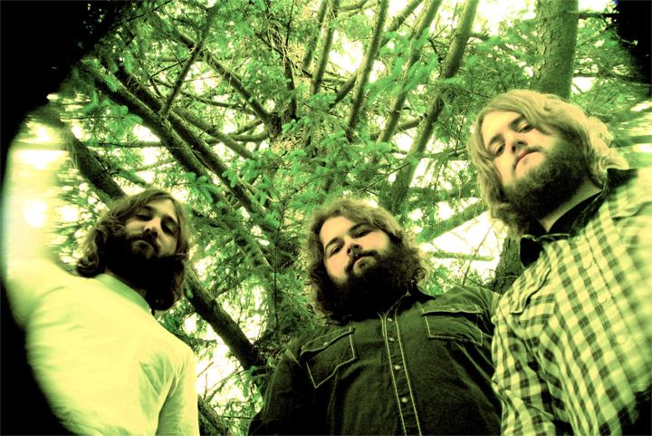 Buffalo Killers Buffalo Killers Alive Naturalsound Records