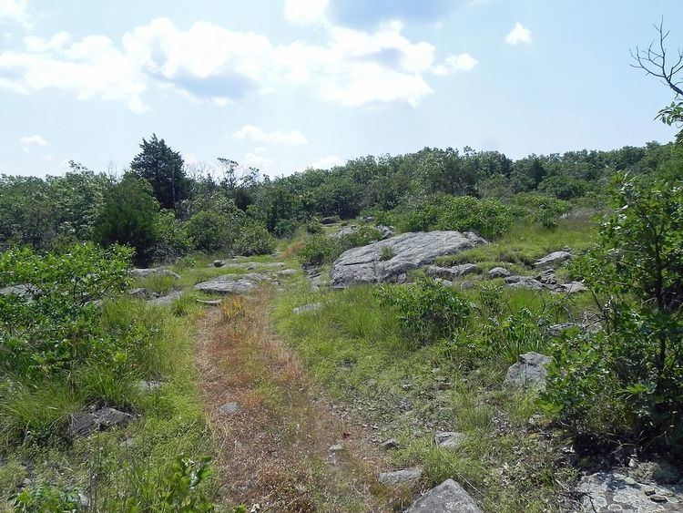 Buford Mountain Conservation Area