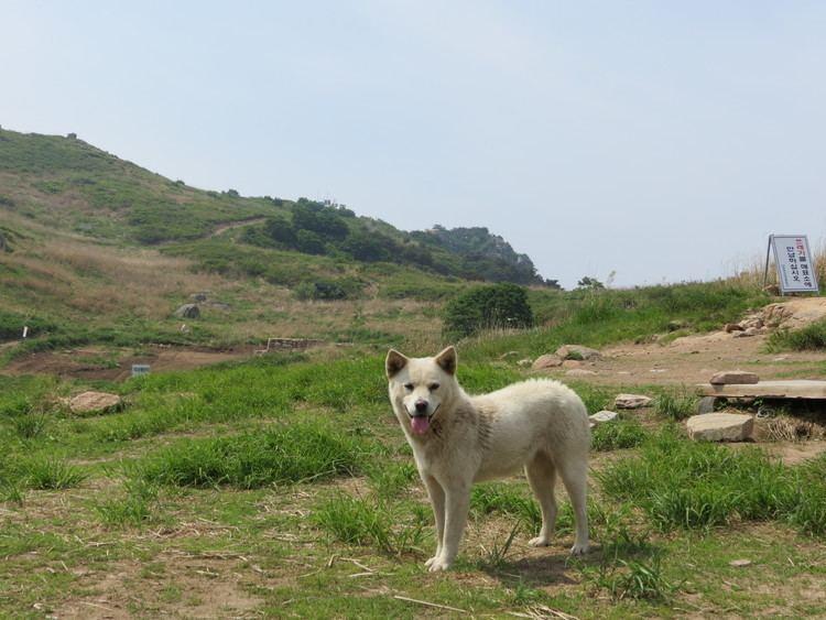 Bugok Changnyeong to Bugok Hiking Trail KoreaThe Final Chapter