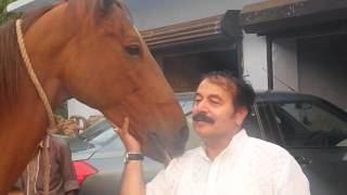 Bugrasi Bugrasi Videos Latest Videos from and about Bugrasi Uttar Pradesh