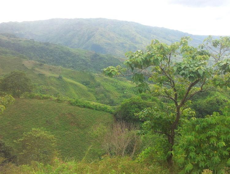 Bukidnon Beautiful Landscapes of Bukidnon