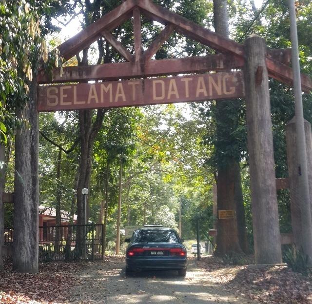 Bukit Batu Lebah Recreational Forest My Heart Soars Bukit Batu Lebah My First Hill in Melaka