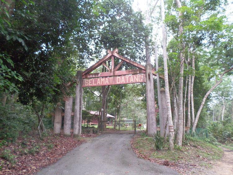 Bukit Batu Lebah Recreational Forest httpsuploadwikimediaorgwikipediacommons44