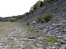 Bull Fork Formation httpsuploadwikimediaorgwikipediacommonsthu