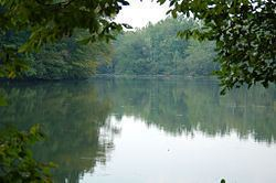 Bull Sluice Lake httpsuploadwikimediaorgwikipediacommonsthu