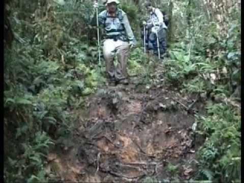 Bulldog Track Bulldog Track New Guinea YouTube