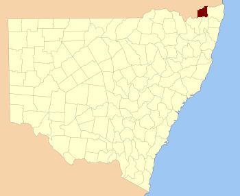 Buller County, New South Wales