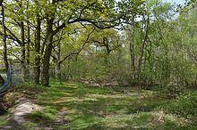 Bullock Wood httpsuploadwikimediaorgwikipediacommonsthu