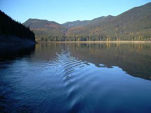 Bumping Lake httpsbumpinglakemarinacomwpcontentuploads2