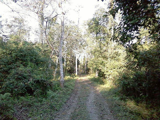 Bura Chapori Wildlife Sanctuary