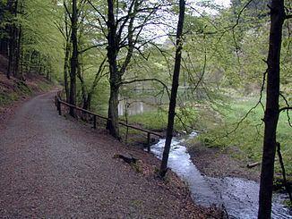 Burgholzbach httpsuploadwikimediaorgwikipediacommonsthu