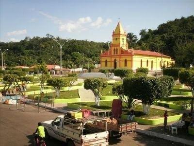 Buriti Maranhão fonte: alchetron.com