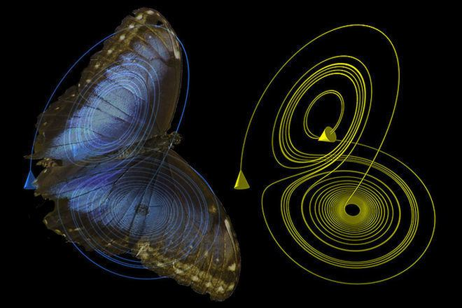Butterfly effect Can a Butterfly in Brazil Really Cause a Tornado in Texas