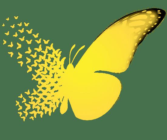 Butterfly effect thebutterflyeffectorgTheButterflyEffectWelcome