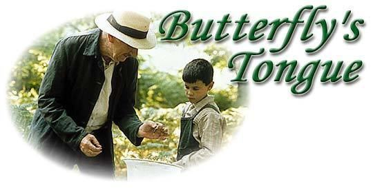 Butterfly's Tongue Butterflys Tongue 2000 Synopsis